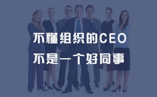 不懂组织的CEO不是一个好同事